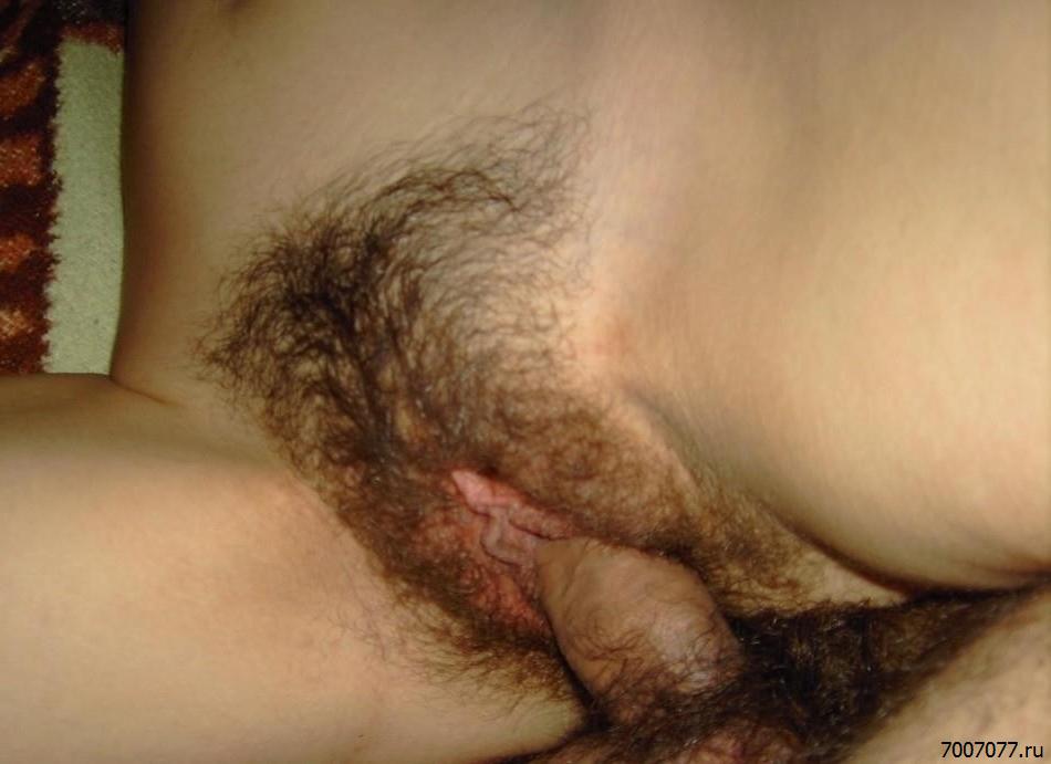Домашний Секс Волосатых Женщин